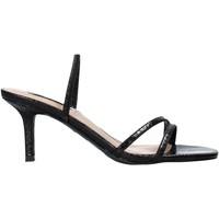 Sapatos Mulher Sandálias Steve Madden SMSLOFT-BLKSNK Preto