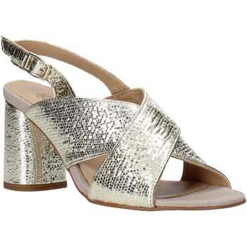 Sapatos Mulher Sandálias IgI&CO 5192211 Outras