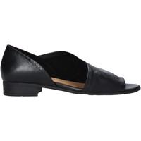 Sapatos Mulher Sandálias Bueno Shoes N5112 Preto