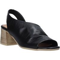 Sapatos Mulher Sandálias Bueno Shoes N1300 Preto
