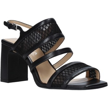 Sapatos Mulher Sandálias Apepazza S0MONDRIAN10/NET Preto
