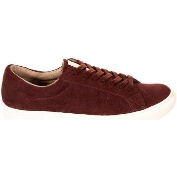 Sapatos Homem Sapatilhas Hackett Fashion Cupsole Vermelho