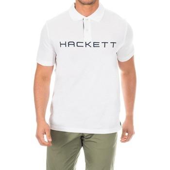 Textil Homem Polos mangas curta Hackett Polo  Golf Branco