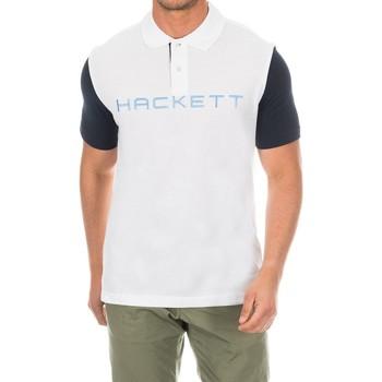 Textil Homem Polos mangas curta Hackett Polo  Golf Multicolor