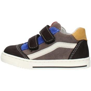 Sapatos Rapaz Sapatilhas Balocchi 602211 Multicolor