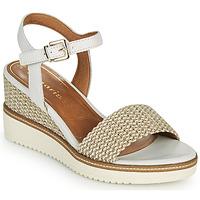 Sapatos Mulher Sandálias Tamaris ALIS Branco / Bege