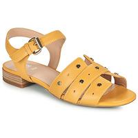 Sapatos Mulher Sandálias Geox D WISTREY SANDALO C Amarelo