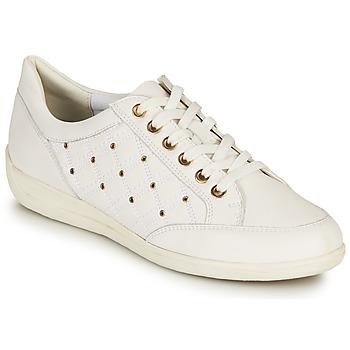 Sapatos Mulher Sapatilhas Geox D MYRIA H Branco / Ouro