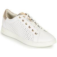 Sapatos Mulher Sapatilhas Geox D JAYSEN B Branco / Ouro