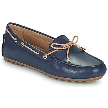 Sapatos Mulher Mocassins Geox D LEELYAN C Azul / Bege