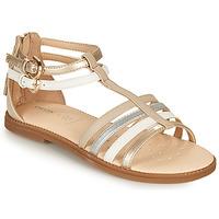Sapatos Rapariga Sandálias Geox SANDAL KARLY GIRL Bege / Prata / Branco