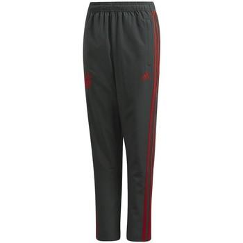 Textil Rapaz Calças de treino adidas Originals  Cinza