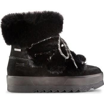 Sapatos Mulher Botins Cougar Vanity Suede 38