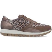 Sapatos Mulher Sapatilhas Imac 608260 Bege