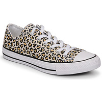Sapatos Mulher Sapatilhas Converse CHUCK TAYLOR ALL STAR ARCHIVE PRINT OX Leopardo