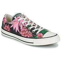 Sapatos Mulher Sapatilhas Converse CHUCK TAYLOR ALL STAR JUNGLE SCENE OX Rosa / Verde