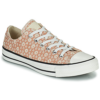 Sapatos Mulher Sapatilhas Converse CHUCK TAYLOR ALL STAR CANVAS BRODERIE OX Bege