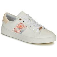 Sapatos Mulher Sapatilhas Ted Baker HUDEP Branco