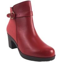 Sapatos Mulher Botins Bellatrix 9575 Rojo