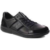 Sapatos Homem Sapatilhas Rieker B271200 Preto