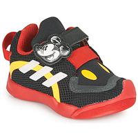 Sapatos Criança Sapatilhas adidas Performance ACTIVEPLAY MICKEY I Preto / Vermelho