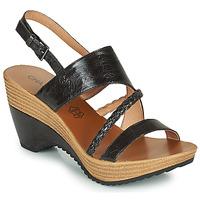 Sapatos Mulher Sandálias Chattawak JULIETTE Preto