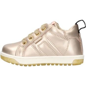 Sapatos Rapaz Sapatilhas Balducci - Polacchino oro CSP4105 ORO