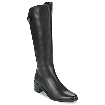 Sapatos Mulher Botas Betty London SALINA Preto