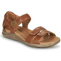 Sapatos Mulher Sandálias Clarks KYLYN STRAP Bege