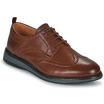 Sapatos Homem Sapatos Clarks CHANTRY WING Castanho