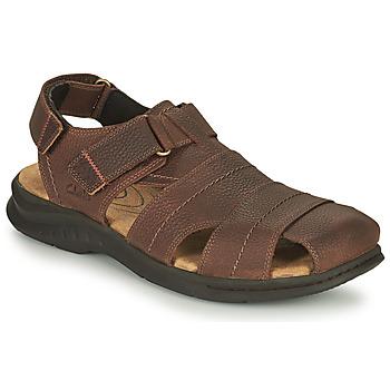 Sapatos Homem Sandálias desportivas Clarks HAPSFORD COVE Castanho