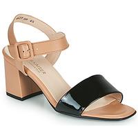Sapatos Mulher Sandálias Peter Kaiser PEORIA Cru / Preto