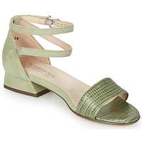 Sapatos Mulher Sandálias Peter Kaiser PAMILA Cáqui
