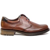 Sapatos Homem Sapatos & Richelieu Kennebec 8158 Castanho