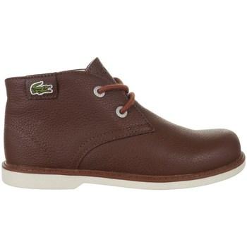 Sapatos Criança Botas baixas Lacoste Sherbrook HI SB Spc Castanho