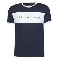 Textil Homem T-Shirt mangas curtas Tommy Hilfiger CN SS TEE LOGO FLAG Marinho / Branco