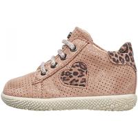Sapatos Rapariga Sapatilhas de cano-alto Falcotto - Polacchino rosa CARYB-1M36 ROSA