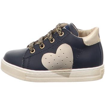 Sapatos Rapariga Sapatilhas Falcotto - Polacchino blu HEART-2C09 BLU