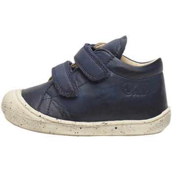 Sapatos Rapaz Sapatilhas de cano-alto Naturino - Polacchino blu COCOON VL-0C02 BLU