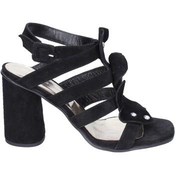 Sapatos Mulher Sandálias Sergio Cimadamore Sandálias BK865 Preto