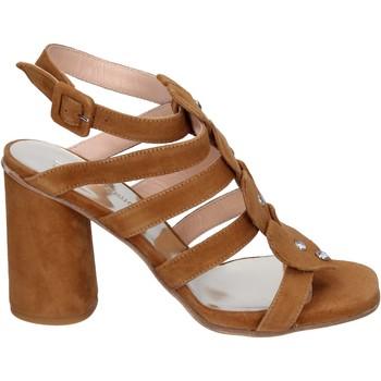 Sapatos Mulher Sandálias Sergio Cimadamore Sandálias BK866 Castanho