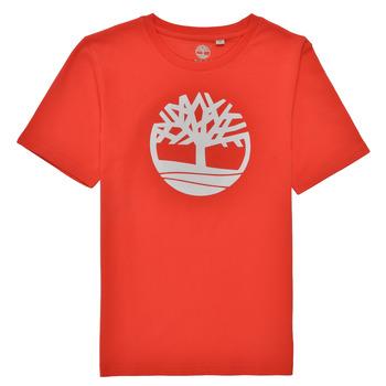 Textil Rapaz T-Shirt mangas curtas Timberland LOLLA Vermelho