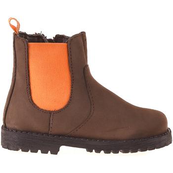 Sapatos Criança Botas baixas Grunland PP0375 Castanho