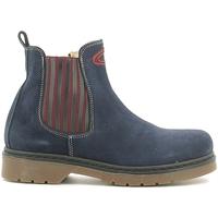 Sapatos Criança Botas baixas Alberto Guardiani GK22806G Azul