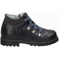 Sapatos Criança Botas baixas Nero Giardini A724500M Azul