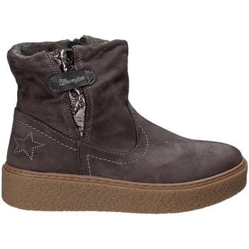 Sapatos Criança Botas baixas Wrangler WG17235 Cinzento