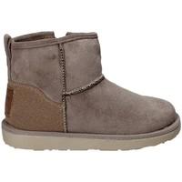 Sapatos Criança Botas baixas Wrangler WG17251 Cinzento