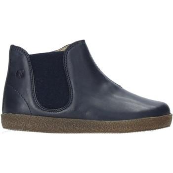 Sapatos Criança Botas baixas Falcotto 2501532 01 Azul