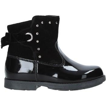 Sapatos Criança Botas baixas NeroGiardini A921275F Preto