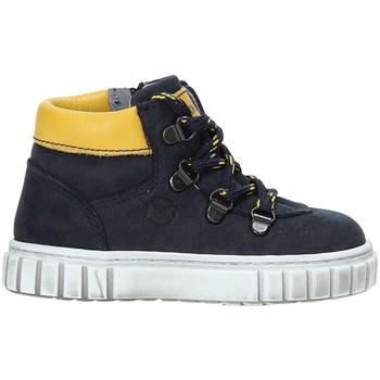 Sapatos Criança Botas baixas NeroGiardini A923781M Azul